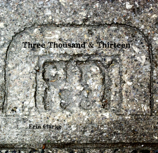 Three Thousand and Thirteen front cover